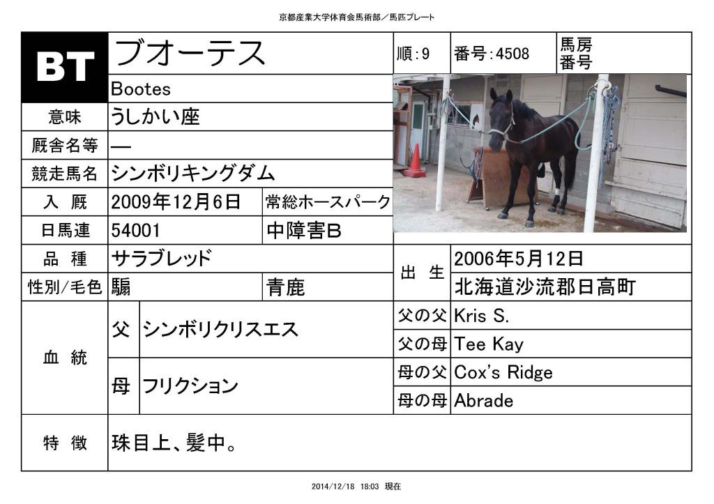 馬匹_ページ_09
