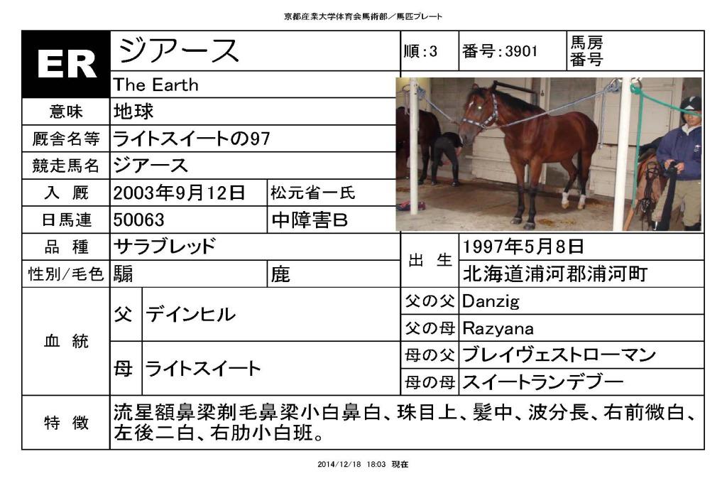 馬匹_ページ_03