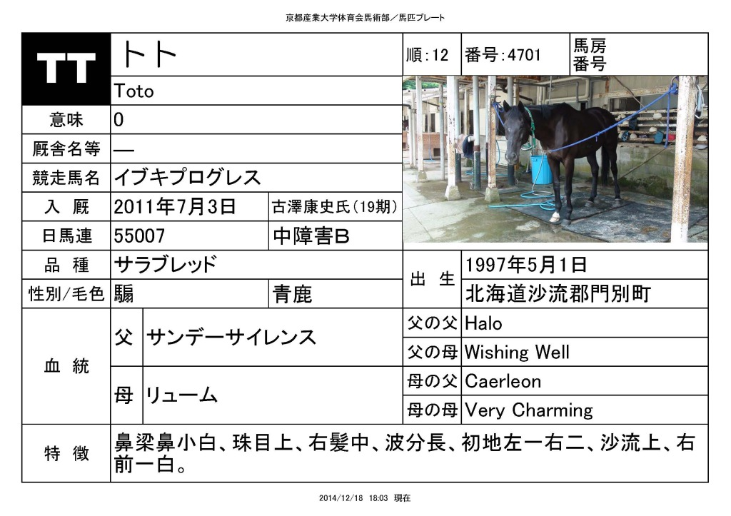 馬匹_ページ_12